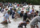 Tin trong nước - Hà Tĩnh: Nhộn nhịp cảnh cả trăm người lao xuống đầm bắt cá cầu may