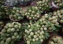 Tin tức - Lạng Sơn: Chợ na Chi Lăng nhộn nhịp mùa thu hoạch, nông dân thu nhập cả trăm triệu đồng
