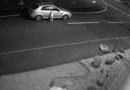 Tin tức - Video: Cảm động cảnh chú chó bị bỏ rơi vẫn cố gắng chạy theo xe của chủ