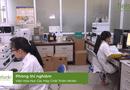 Sức khoẻ - Làm đẹp - Sự kỳ diệu của nano curcumin trắng khi ứng dụng vào mỹ phẩm