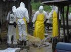 Thế giới 24h - 8 bác sĩ, nhà báo bị đánh chết khi dập dịch Ebola ở Guinea