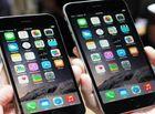 Sản phẩm số - Hà Nội: Xếp hàng cả đêm để đợi mua siêu phẩm iPhone 6 chính hãng