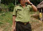 An ninh - Hình sự - Hạt trưởng kiểm lâm mất chức vì để rừng bị phá