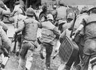 Tin trong nước - Bi kịch của chữ kỳ 29: Cuộc rút lui khỏi ngọn đồi tử thần