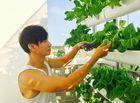 Chuyện làng sao - Ngắm vườn rau sạch trong biệt thự triệu đô của các sao Việt