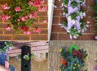 Cộng đồng mạng - 10 ý tưởng trồng cây thẳng đứng tiết kiệm không gian cho nhà chật