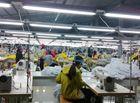 Tin tức - Xử phạt doanh nghiệp chậm lên sàn: Giơ cao nhưng đánh vẫn khẽ