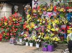 """Tin tức - Ngày 20/11: Hoa bó tiền triệu, hoa lẻ giá """"cao vút"""" lên 50 nghìn đồng/bông"""