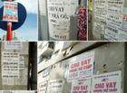 Tin trong nước - Cái giá phải trả của những ông trùm tín dụng đen