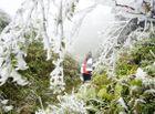 Tin tức - Miền Bắc sắp đón đợt rét cực mạnh, Hà Nội xuống 8 độ C