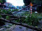Tin tức - Gió lốc kèm mưa đá tàn phá nhiều nhà cửa ở Sơn La, Bắc Kạn