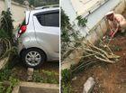 Tin tức - Thông tin bất ngờ vụ cô giáo lùi ôtô ở sân trường khiến 2 học sinh thương vong