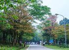 Tin tức - Gợi ý 6 điểm du lịch hấp dẫn quanh Hà Nội dịp mùng 2/9