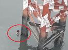 Tin tức - Người đàn ông nhảy cầu tự tử vội bơi vào bờ khi thấy....công an