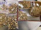 """Pháp luật - Thông tin sốc vụ trộm vàng """"khủng"""": Không phải 230, nhân viên quầy trộm đến 430 lượng vàng trong 6 năm"""