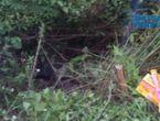 Nóng trong tuần - Sự thật về xác chết của thiếu nữ mất tích tại Hà Tĩnh