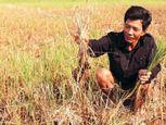 Cận cảnh di dời biệt thự 800 tấn ở Nghệ An  - Ảnh số 4