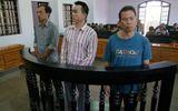 Bố vợ và con rể dắt nhau vào tù vì trồng cần sa kiếm lời