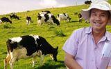 """Bầu Đức """"rút hầu bao"""" làm biệt thự siêu khủng để...nuôi bò"""