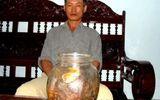 Sâm 800 tuổi đại gia thế giới thèm thuồng, lão nông Việt ngâm rượu... uống chơi