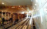 Vinamilk tiếp tục nhập bò sữa cao sản từ Úc về Việt Nam