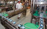 Ai chống lưng cho doanh nghiệp lũng đoạn giá sữa?