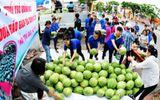Tỉnh đoàn bị nghi ăn chặn tiền dưa hấu: PCT Quảng Ngãi nói gì?