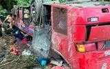 Hiện trường vụ xe khách mất lái lao xuống vực ở đèo Lò Xo