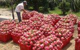 Nghịch lý trái cây Việt: Nơi rẻ bèo, chỗ đắt đỏ