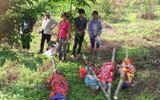 Toàn cảnh cuộc truy bắt nghi phạm thảm sát 4 người ở Yên Bái
