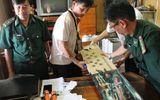 """Phát hiện tàu hàng vận chuyển 45 khẩu súng trái phép """"cập bến"""" về Việt Nam"""
