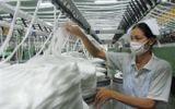 TPP: Dệt may vừa mừng vừa lo