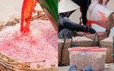Ruốc nhuộm đỏ bằng hóa chất ở Phú Yên: Bộ Y tế vào cuộc