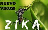 Tỉnh Khánh Hòa bác bỏ thông tin 4 người nhiễm virus Zika