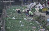 """Phát hiện bất ngờ của bạn đọc về việc """"tắm rau"""" bằng nước ô nhiễm ở Hưng Yên"""