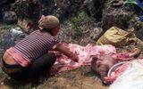 Hàng chục xác lợn chết bị người dân lượm về tiêu thụ