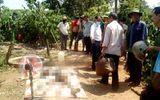 Vợ phát hiện thi thể chồng nghi bị sát hại bên giếng nước