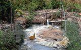 Kiểm tra việc sử dụng hầm biogas trên toàn tỉnh Cà Mau