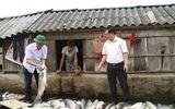 Thanh Hóa: Đền bù 1,4 tỷ đồng cho 34 hộ dân bị thiệt hại sau vụ cá chết