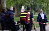 11 người Pháp bị sét đánh trong bữa tiệc sinh nhật ở công viên