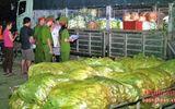 Nhiều loại rau quả nhập từ Trung Quốc chứa chất bảo quản, thuốc bảo vệ thực vật