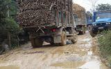 Thanh Hóa: Xe quá khổ, quá tải cày nát đường dân sinh