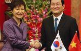 Chủ tịch nước hội đàm với Tổng thống Hàn Quốc