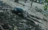 Vụ 2 thanh niên chết bất thường trong vườn điều: Hàng loạt nghi vấn cần được làm rõ!?