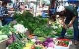 Rau quá đắt, dân Hà Nội liều mạng ăn rau Trung Quốc