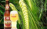 Bia Đại Việt- Thương hiệu khởi nguồn từ tâm huyết