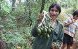 """""""Người rừng"""" Hồ Văn Lang bỗng dưng muốn... lấy vợ"""