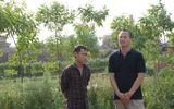 Vụ sập lò gạch: Cty Phú Hà thi công công trình không có thiết kế?