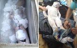 Đau lòng gia đình ướp xác con trong tủ lạnh chờ bồi thường