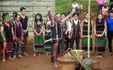 Đặc sắc văn hóa M'nông qua phục dựng lễ cúng mưa đầu mùa